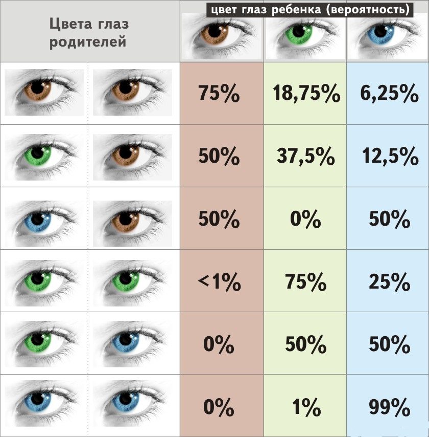 Augenfarbe Vererbung Tabelle